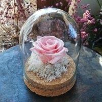 Kopuła z wieczną różą