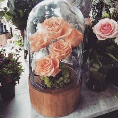 Kopuła z wiecznymi różami