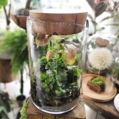 Ogród w szkle z oczkiem wodnym