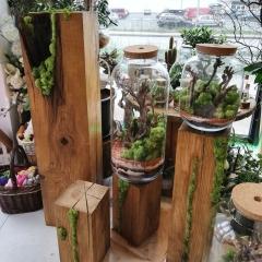 Ogród w szkle
