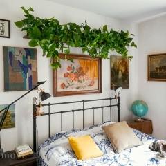 Półka roślinna